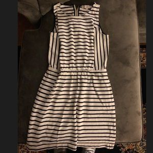 Any Taylor Loft striped cinched waist dress